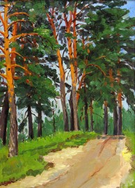 Road Through Tall Summer Pines #14